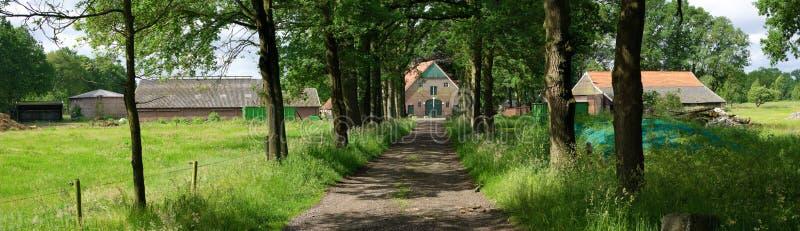Nederlands landbouwbedrijf royalty-vrije stock afbeelding