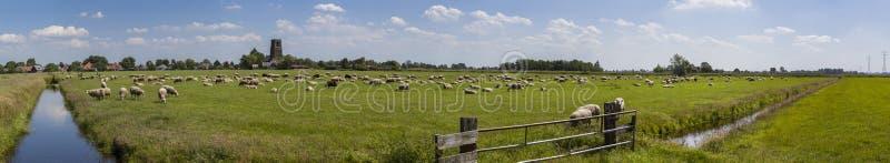 Nederlands landbouwgrondpanorama royalty-vrije stock afbeeldingen