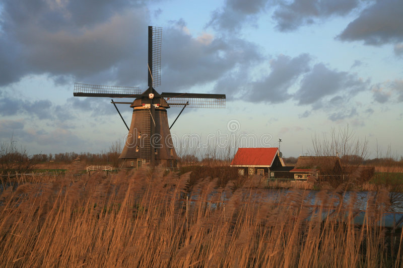 Nederlands landschap stock afbeelding