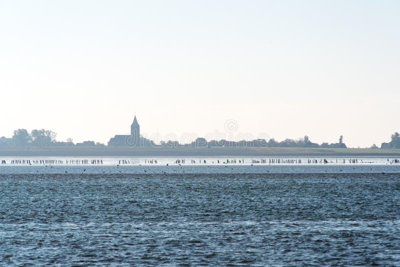 Nederlands landschap zoals die van het water wordt gezien stock afbeelding