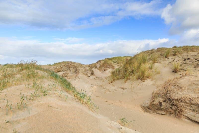 Nederlandse de Noordzeekust van het duinlandschap met hellingen met duingrassen en naakte valleien royalty-vrije stock foto