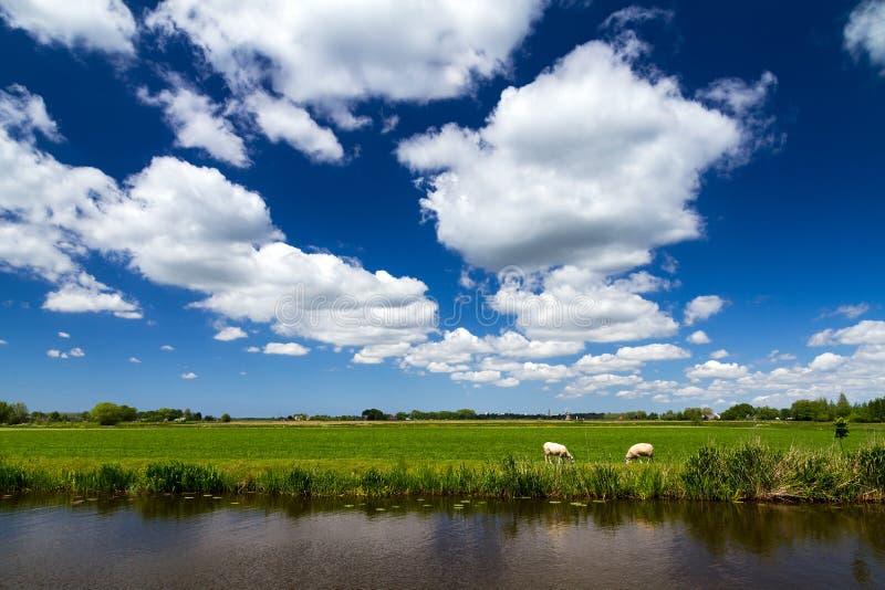Nederlandse hemel stock fotografie