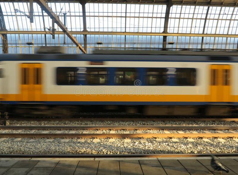 Nederlandse trein in motie royalty-vrije stock fotografie
