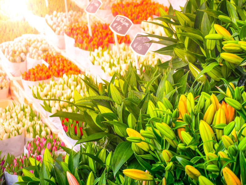 Nederlandse tulpenmarkt Multicolored bloemen voor verkoop, Amsterdam, Nederland royalty-vrije stock foto's