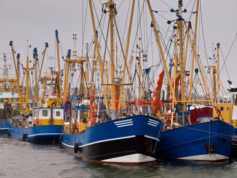 Nederlandse vissersvloot lauwersoog stock afbeelding