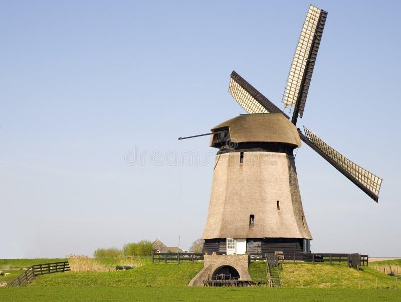 Nederlandse windmolen 19 stock foto