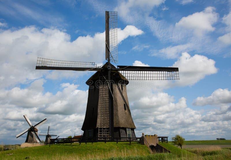Nederlandse windmolens royalty-vrije stock foto
