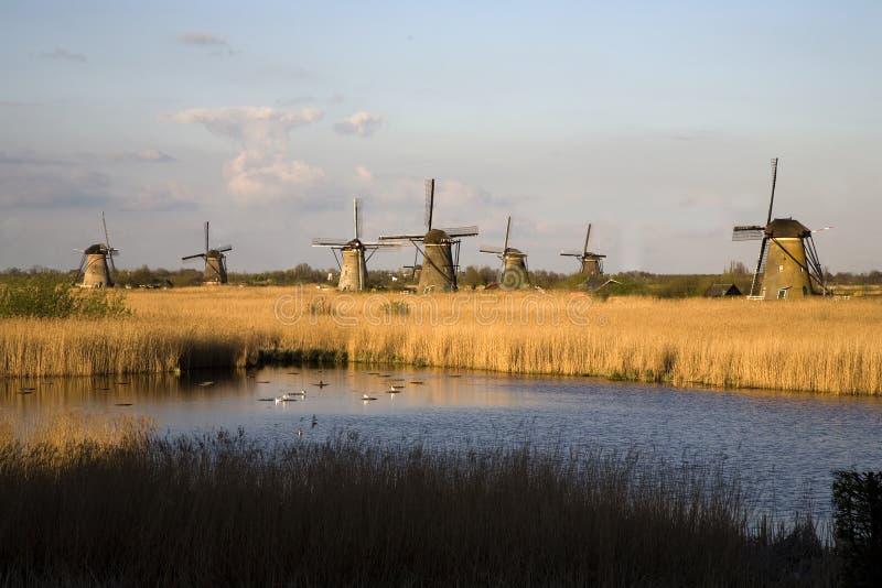 Nederlandse windmolens in Kinderdijk stock foto's