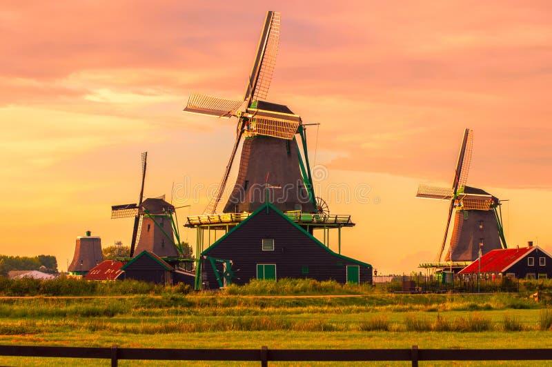 Nederlandse windmolens tegen roze hemel stock afbeeldingen