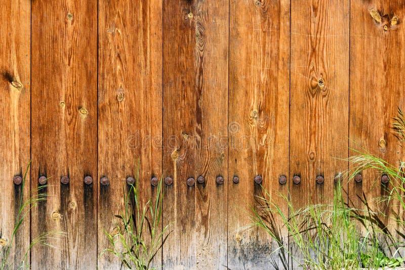 Nedersta del av trädörren som göras av ljusa träplankor royaltyfri foto