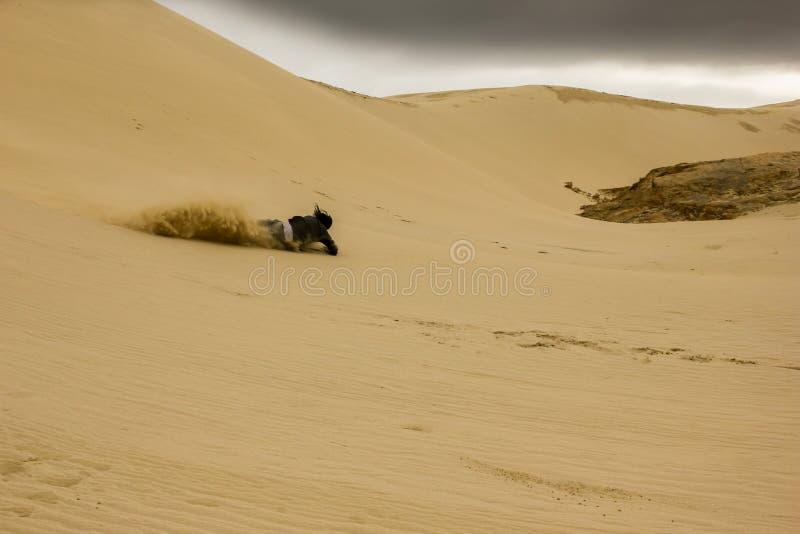 Nedgång över en man som ner faller i sanddyerna medan surfa för sand/logi med att plaska för sand arkivfoton