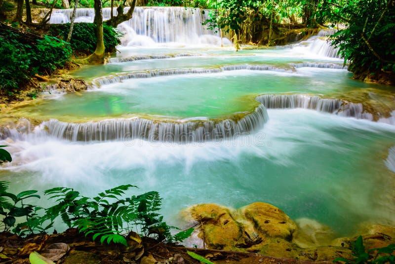 Nedgång för Kuang sivatten i Luang prabang, Laos royaltyfri bild