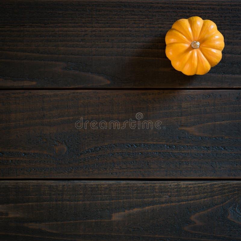 Nedgång Mini Pumpkin i Minimalist stillebenkort på lynniga mörka Shiplap Wood bräden med extra rum eller utrymme för kopian, text royaltyfria foton