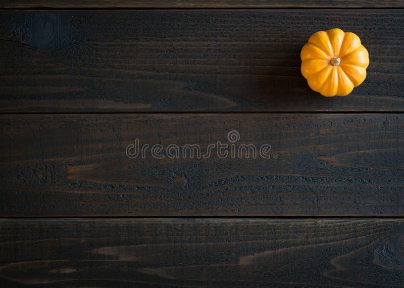 Nedgång Mini Pumpkin i Minimalist stillebenkort på lynniga mörka Shiplap Wood bräden med extra rum eller utrymme för kopian, text arkivfoton