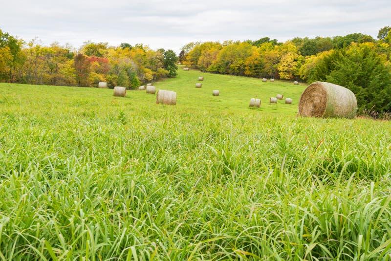 Nedgång Tid Hay Field arkivbilder