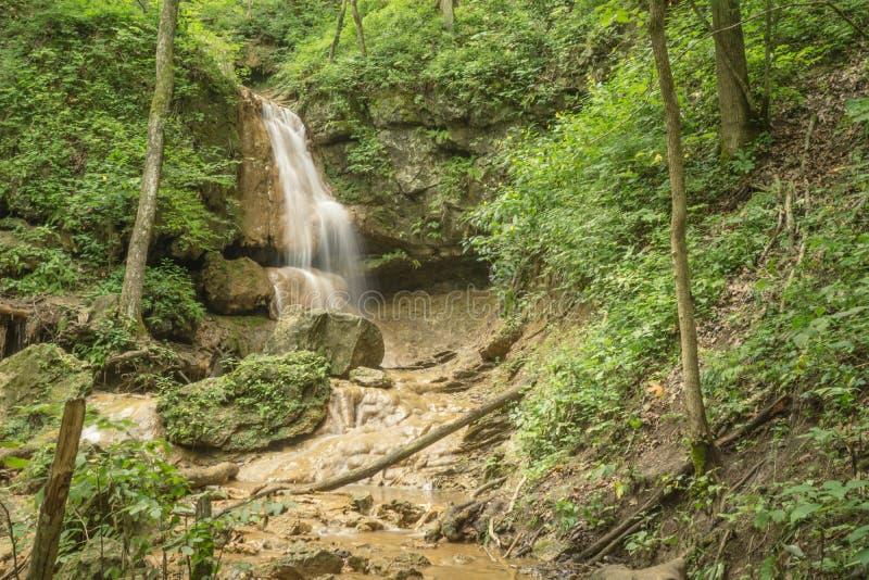 Nedgångar Ridge Falls arkivfoto