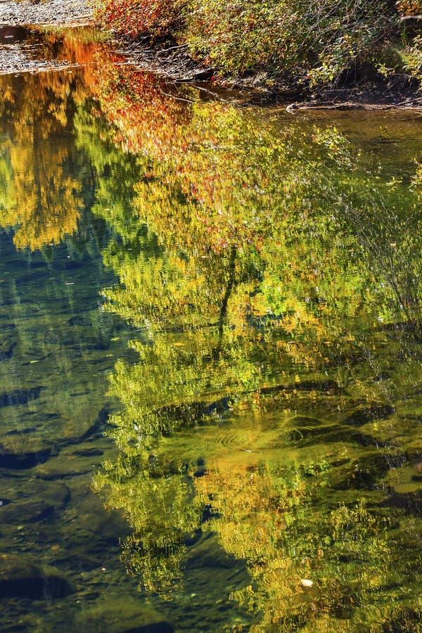 Nedgången färgar den reflexionsWenatchee floden Washington arkivfoton