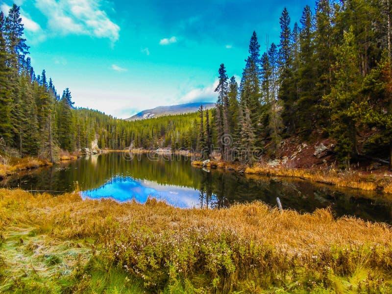Nedgången färgar den Yellowhead slingan med dammreflexioner royaltyfri fotografi