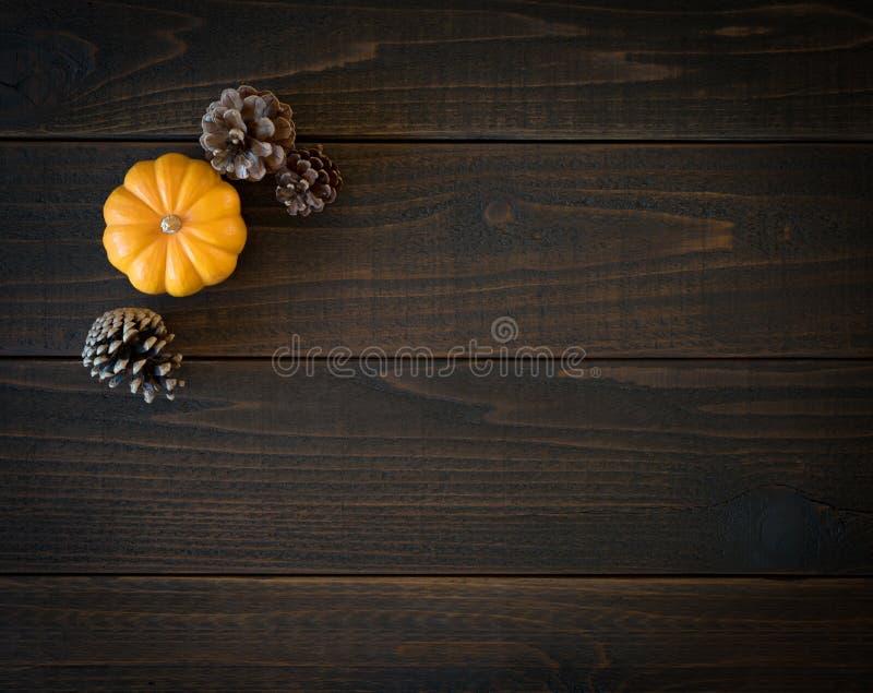 Nedgången Mini Pumpkin och sörjer kottar i Minimalist stillebenkort på lynniga mörka Shiplap Wood bräden med extra rum eller utry arkivfoton