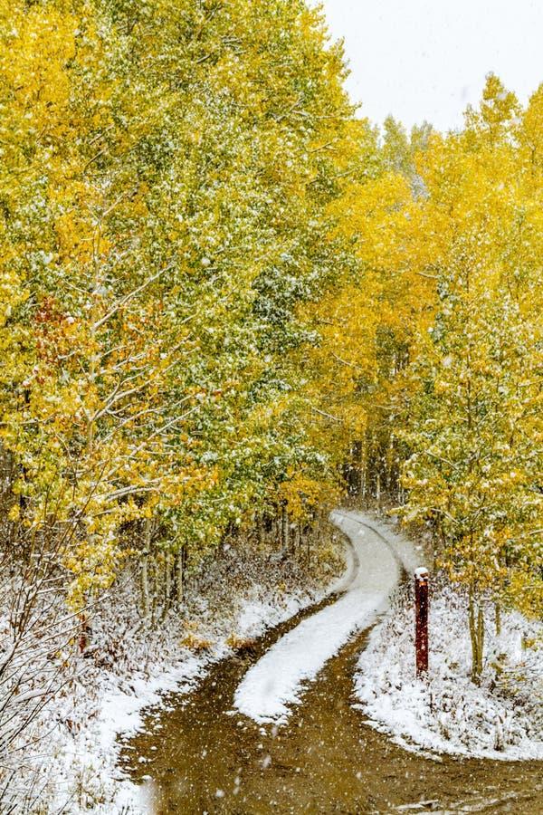 Nedgångfärg och insnöade Colorado arkivfoton