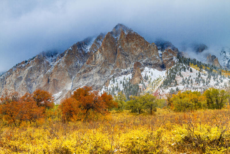 Nedgångfärg och insnöade Colorado royaltyfri bild