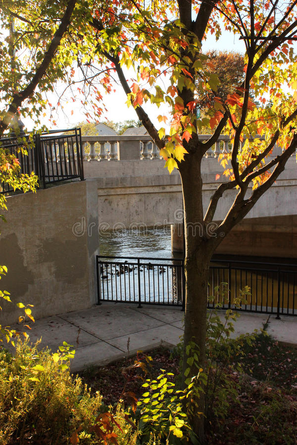 Nedgångfärg på Flint River Bridge royaltyfria bilder