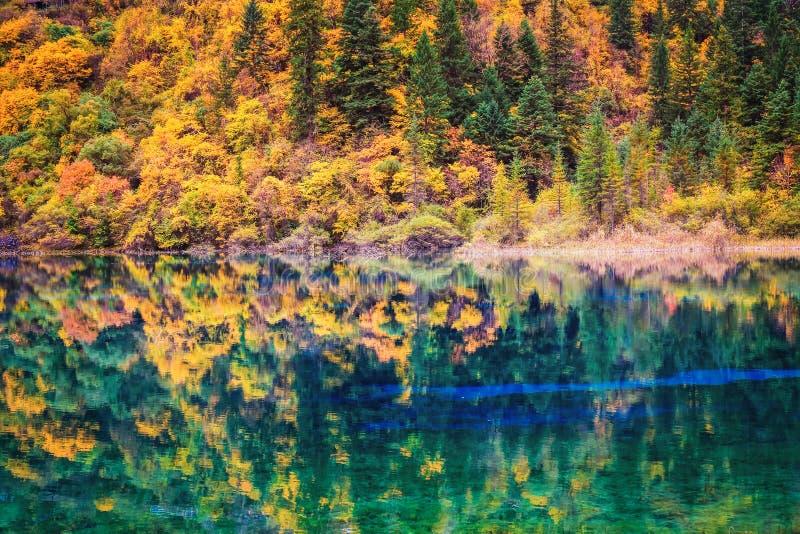 Nedgångfärger i lakefront arkivbild