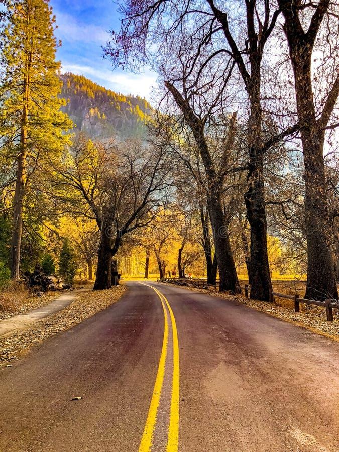 Nedgångfärger i vår på Yosemite parkerar royaltyfri fotografi