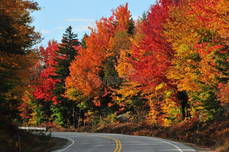 Nedgångfärger, New Hampshire royaltyfri foto