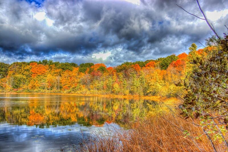 Nedgångfärger på det Spettigue dammet arkivbild