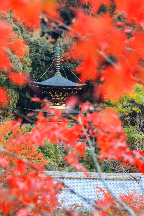 Nedgånglövverk och Tahoto pagod på den Eikando templet, Sakyo-ku, Kyoto, Japan arkivbilder