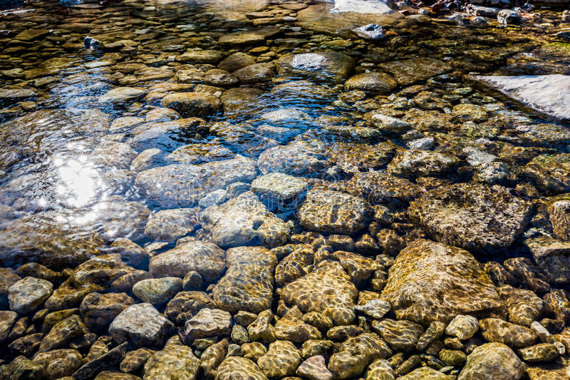 Nedgånglövverk på den borttappade lönndelstatsparken i Texas royaltyfria foton