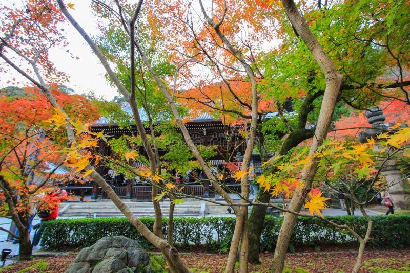 Nedgånglövverk på den Eikando templet, Sakyo-ku, Kyoto, Japan royaltyfri foto