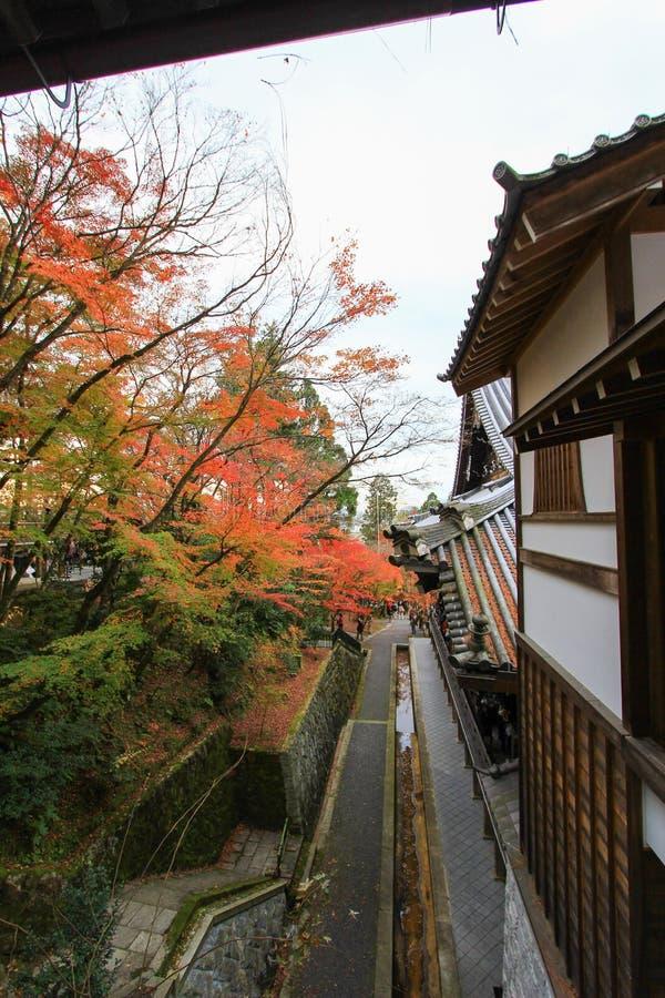 Nedgånglövverk på den Eikando templet, Sakyo-ku, Kyoto, Japan arkivbilder