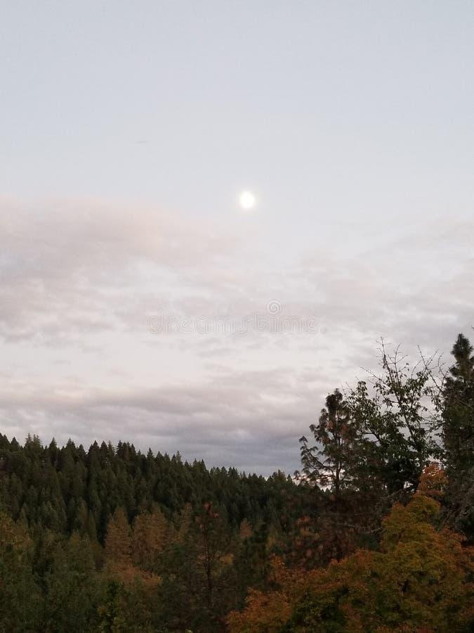 Nedgångmåne fotografering för bildbyråer