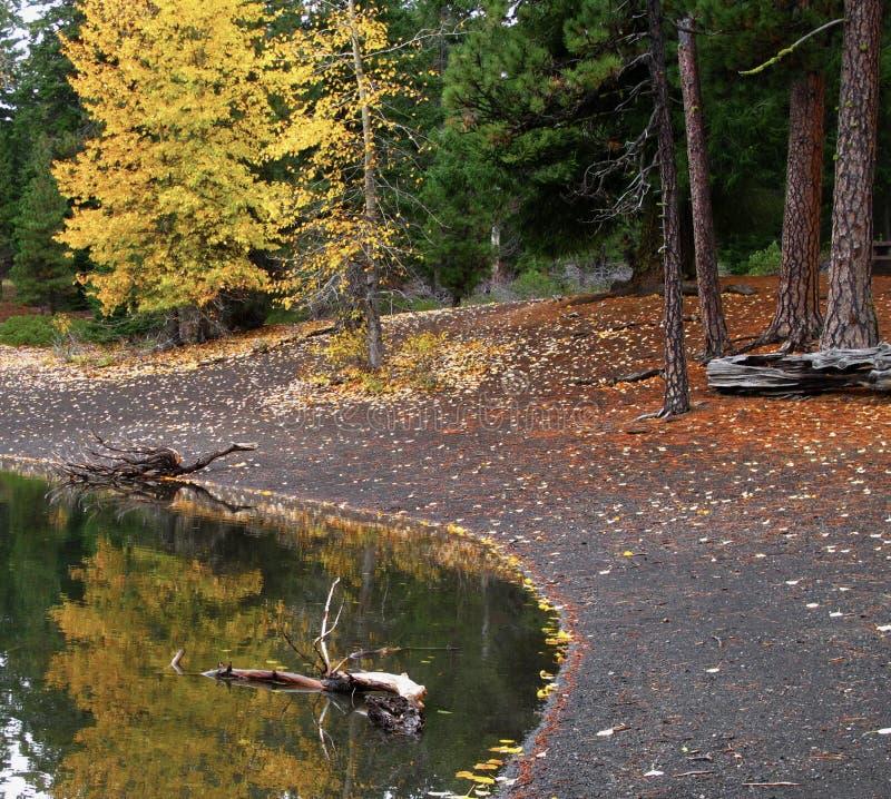 Nedgångreflexioner spanar in Lake royaltyfri foto