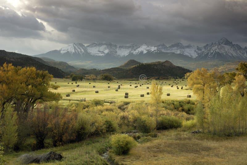 Nedgångsikt av höbaler i ett fält med San Juan Mountain område av Dallas Divide precis förutom Ridgway, Colorado arkivfoton
