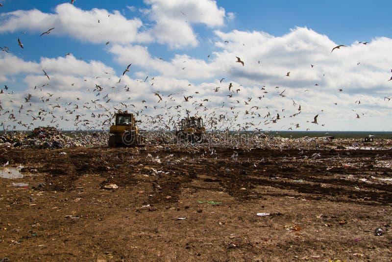 Nedgrävning av sopor rackar ner på bulldozrar som bearbetar avskräde arkivfoton