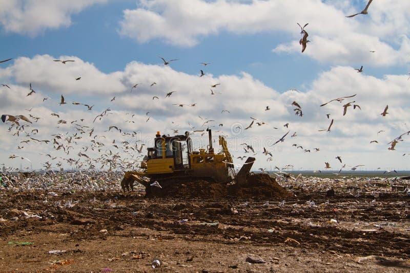 Nedgrävning av sopor rackar ner på bulldozrar som bearbetar avskräde royaltyfri foto