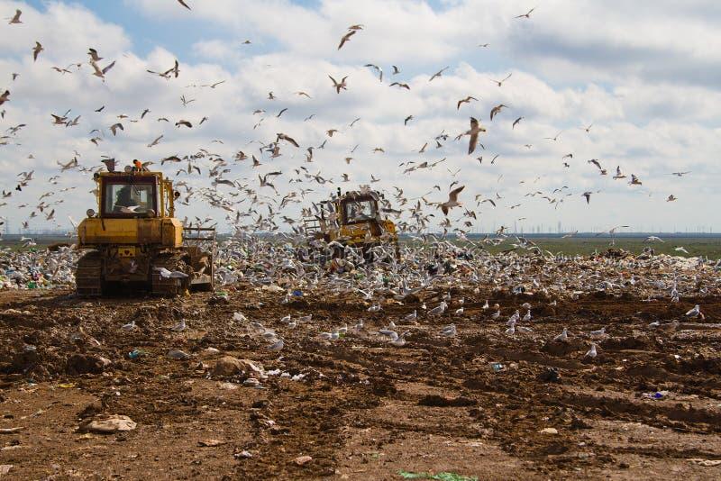 Nedgrävning av sopor rackar ner på bulldozrar som bearbetar avskräde arkivfoto