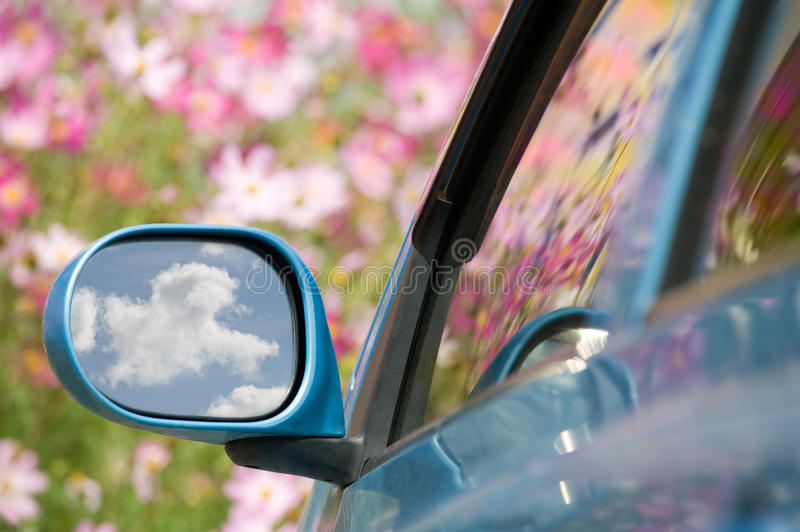Download Need for speed stock photo. Image of blurred, auto, bloom - 21380248
