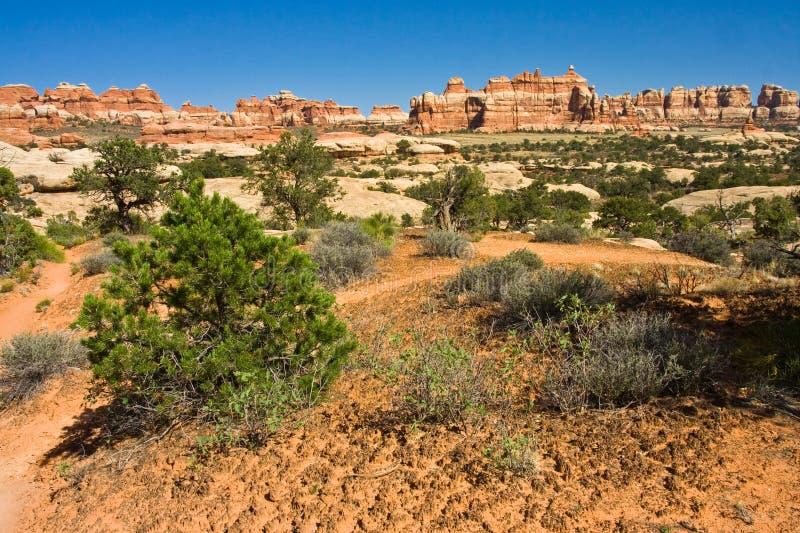 Download Needle District stock photo. Image of nature, utah, exploration - 11883562