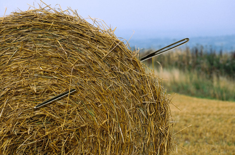 Download Needle in a haystack stock image. Image of reap, fruitless - 1819331