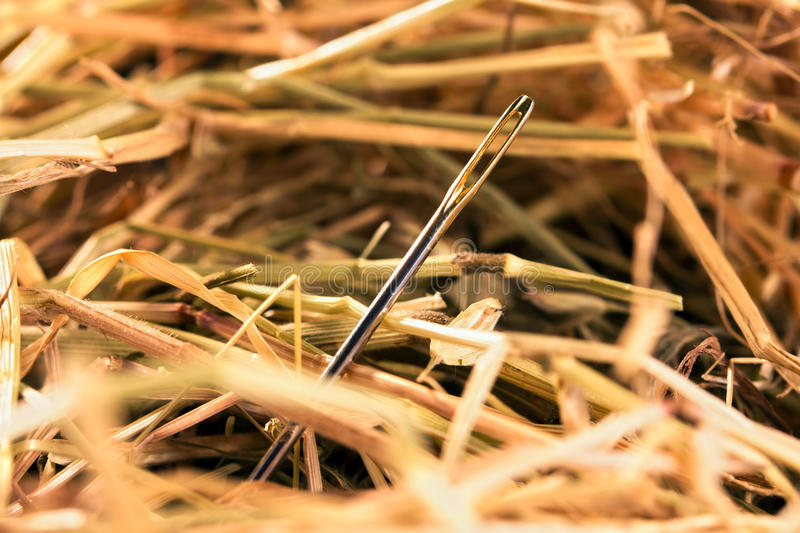Needle in a haystack stock image