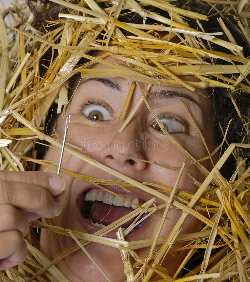 Needle in Haystack royalty free stock image