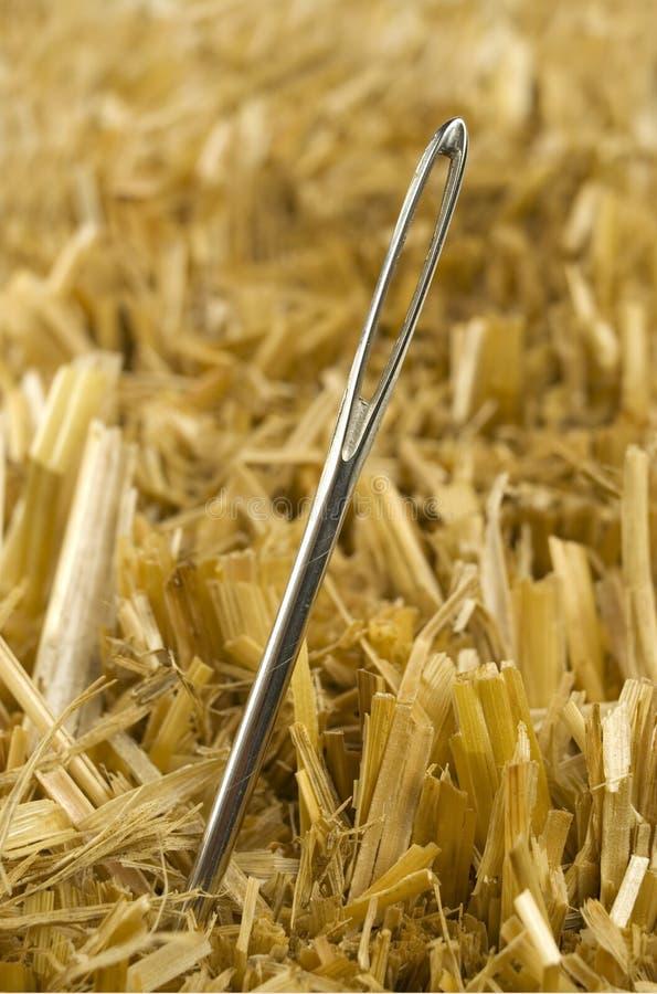Free Needle In A Haystack Stock Photos - 1606553