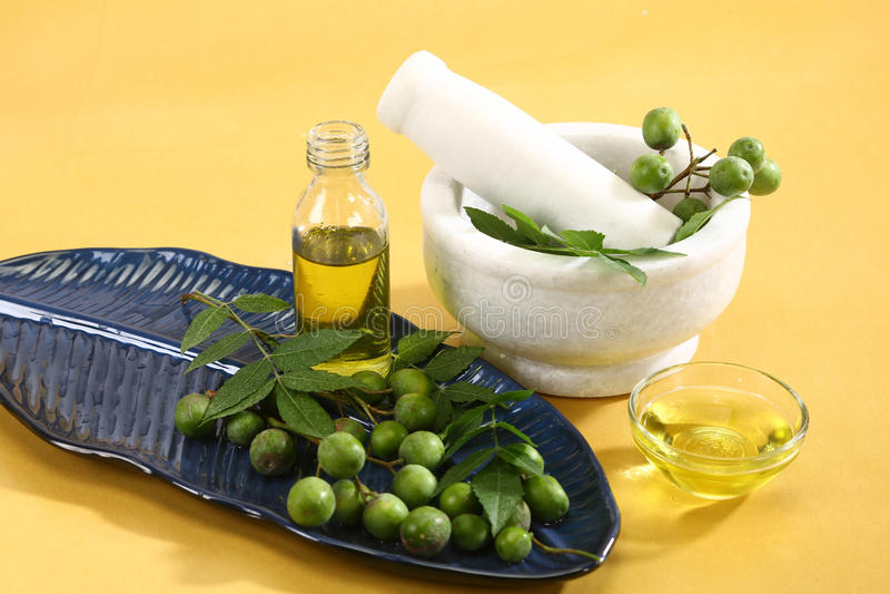 Neem Ayurvedic Oil. In glass bowl royalty free stock image