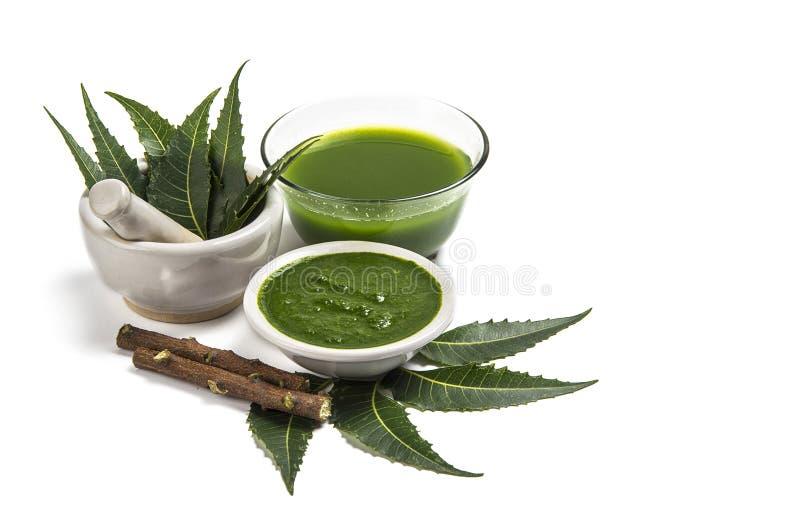 Neem medicinal sae no almofariz e no pilão com a pasta do neem, o suco e os galhos imagem de stock