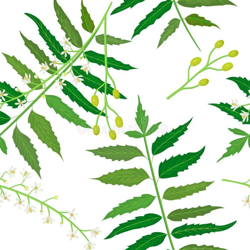 Neem or nimtree seamless pattern vector vector illustration