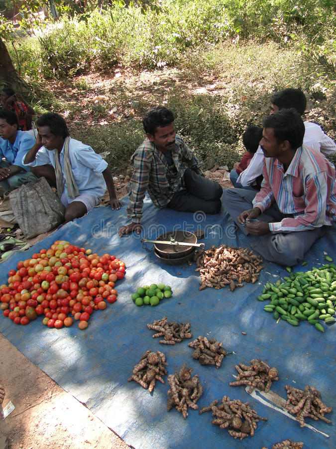 Negócio tribal dos aldeões para vegetais imagens de stock royalty free